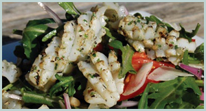 Delicious Fresh Calamari Rocket Salad