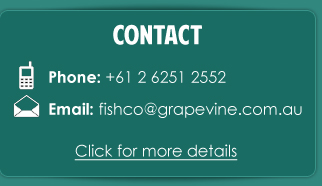 Contact FishCo Down Under